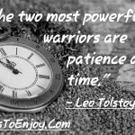 The two most powerful warriors are patience and time. Leo Tolstoy