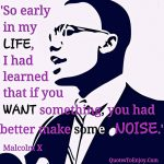So early in my life, I had learned that if you want something, you had better make some noise. Malcolm X