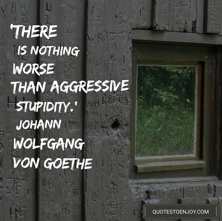There is nothing worse than aggressive stupidity. Johann Wolfgang von Goethe