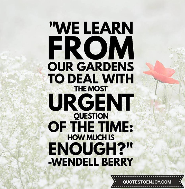 We learn from our gardens to deal with the most urgent question of the time: How much is enough - Wendell Berry