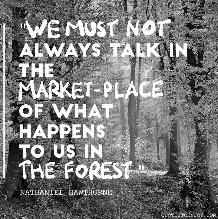 We must not always talk in the marketplace of what happens to us in the forest. — Nathaniel Hawthorne