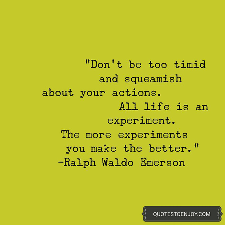 Don't be too timid and squeamish about your actions. All life is an experiment. The more experiments you make the better. - Ralph Waldo Emerson