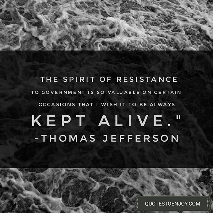 The spirit of resistance to government is so valuable on certain occasions that I wish it to be always kept alive. - Thomas Jefferson