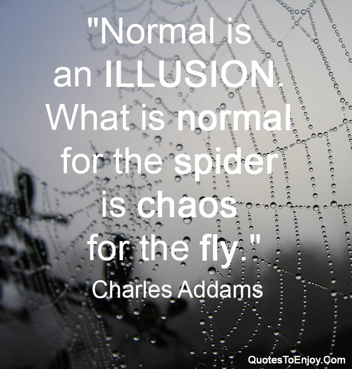 Normal is an illusion what is normal for the spider is charles charles addams altavistaventures Choice Image